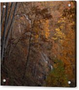 Fall At Amicalola Falls Acrylic Print