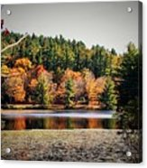 Fall At Bass Lake Acrylic Print