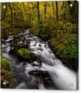 Fall At Bridal Veil Creek Acrylic Print