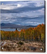 Fall At Hilton Creek Acrylic Print