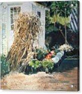 Fall At Ivy Corners Acrylic Print by Elizabeth Carr