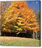 Fall At Kanuga Acrylic Print