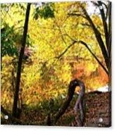 Fall At Lincoln Lake Acrylic Print