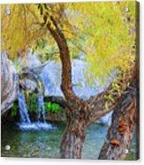 Fall At Murray Falls I Acrylic Print