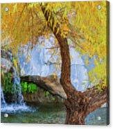 Fall At Murray Falls II Acrylic Print