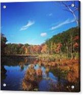 Fall At The Pond Acrylic Print