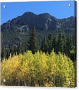 Fall At Twin Sisters Acrylic Print
