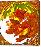Fall Ball Acrylic Print