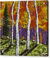 Fall Birch Trees Painting Acrylic Print