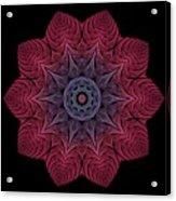 Fall Blossom Zxk-10-43 Acrylic Print