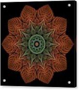 Fall Blossom Zxk-4310-2a Acrylic Print
