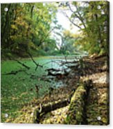 Fall By A River Acrylic Print