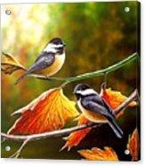 Fall Chickadees Acrylic Print