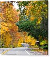 Fall Color Along Road  5643 Acrylic Print