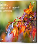 Fall Color - Haiku Acrylic Print