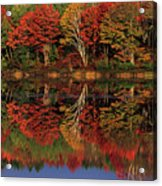 Fall Color Reflected In Thornton Lake Michigan Acrylic Print