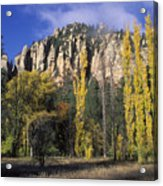 Fall Colors And Red Rocks Near Cave Acrylic Print