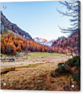 Fall Colors At Alpe Devero Acrylic Print