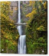 Fall Colors At Multnomah Falls Acrylic Print