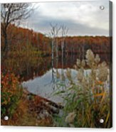 Fall Colors At The Reservoir Acrylic Print
