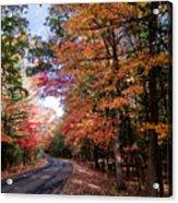 Fall Colors Backroad Acrylic Print