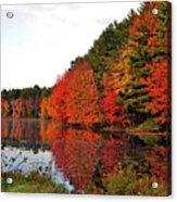 Fall Colors In Madbury Nh Acrylic Print
