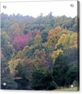 Fall Colors In Rockbridge County Acrylic Print