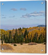 Fall Colors In The Inner Basin Acrylic Print