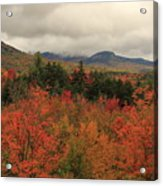 Fall Colors In White Mountains New Hampshire Acrylic Print