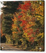 Fall Colors Line A New England Road Acrylic Print by Heather Perry