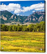 Fall Colors Of Boulder Colorado Acrylic Print