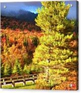 Fall Colors On Grandfather Mountain Ap Acrylic Print