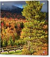 Fall Colors On Grandfather Mountain Acrylic Print
