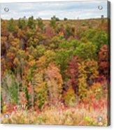 Fall Colors On Hillside Acrylic Print