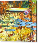 Fall Colors On The Lily Pond Acrylic Print