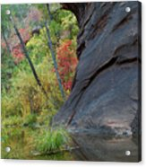 Fall Colors Peek Around Mountain Vertical Acrylic Print