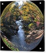 Fall With A Twist Acrylic Print