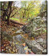 Fall Creek View Acrylic Print