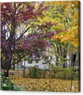Fall Day Acrylic Print
