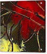 Fall Decor Acrylic Print