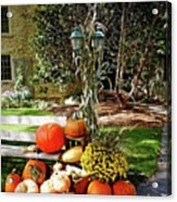 Fall Display Acrylic Print