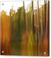 Fall Energy Acrylic Print