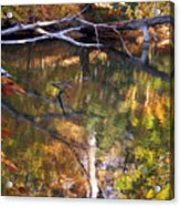Fall Fallen Acrylic Print