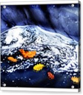 Fall Flotilla Acrylic Print
