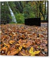 Fall Foliage At Horsetail Falls Acrylic Print