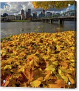Fall Foliage In Portland Oregon City Acrylic Print