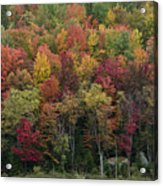 Fall Foliage In The Adirondack Mountains - New York Acrylic Print by Brendan Reals