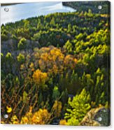 Fall Forest And Lake Top View Acrylic Print