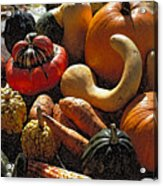 Fall Fruit And Vegetables  Acrylic Print