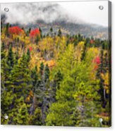 Fall In Baxter State Park Maine Acrylic Print
